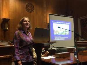 Endocrinology Editor-in-Chief Andrea C. Gore, PhD, speaks at the Congressional briefing celebrating 25 years of research on endocrine-disrupting chemicals.